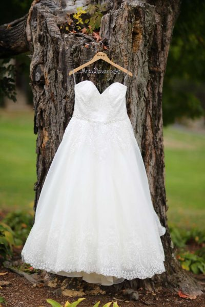 bridal gown hanging off tree