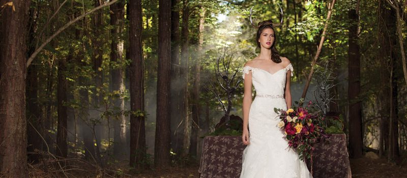 Woods photo shoot of bridal gowns